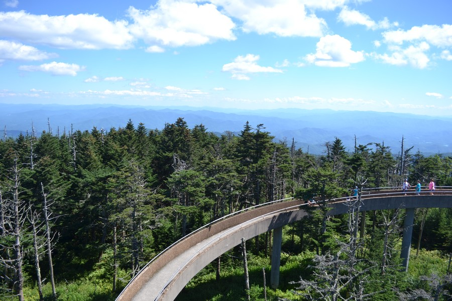 Passerelle Smoky Moutains Appalaches