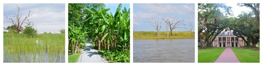 Montage Louisiane 5 - Que voir en Louisiane