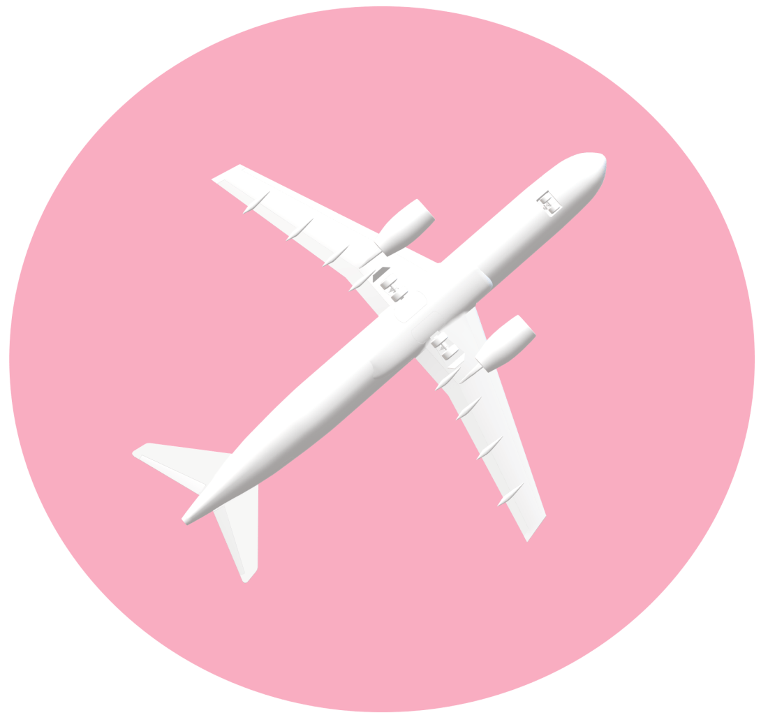 avion 2 - Projet voyage USA