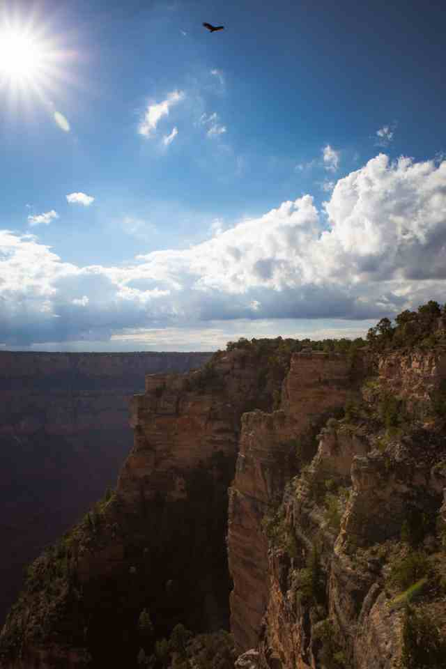 Travel With Meraki- Grand Canyon - Arizona - USA