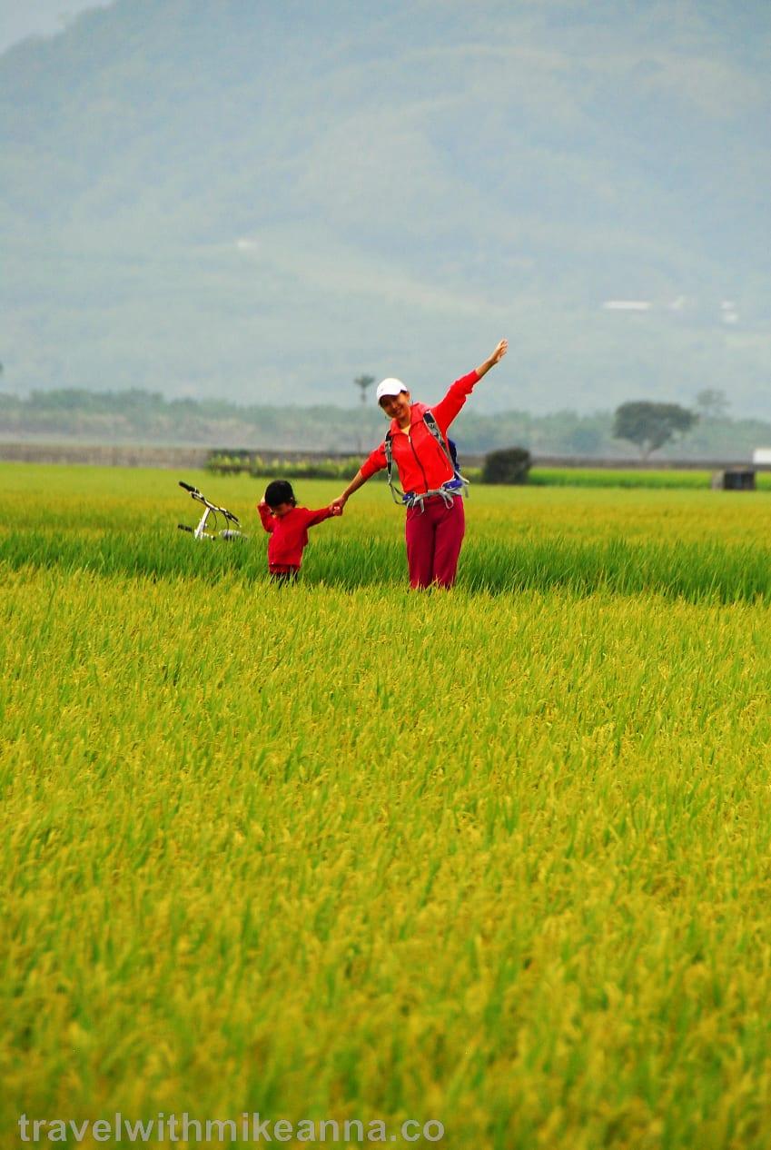 台灣 花蓮 台東 花東 攝影 照片 旅遊 Taiwan Hualien Taitung photography travel