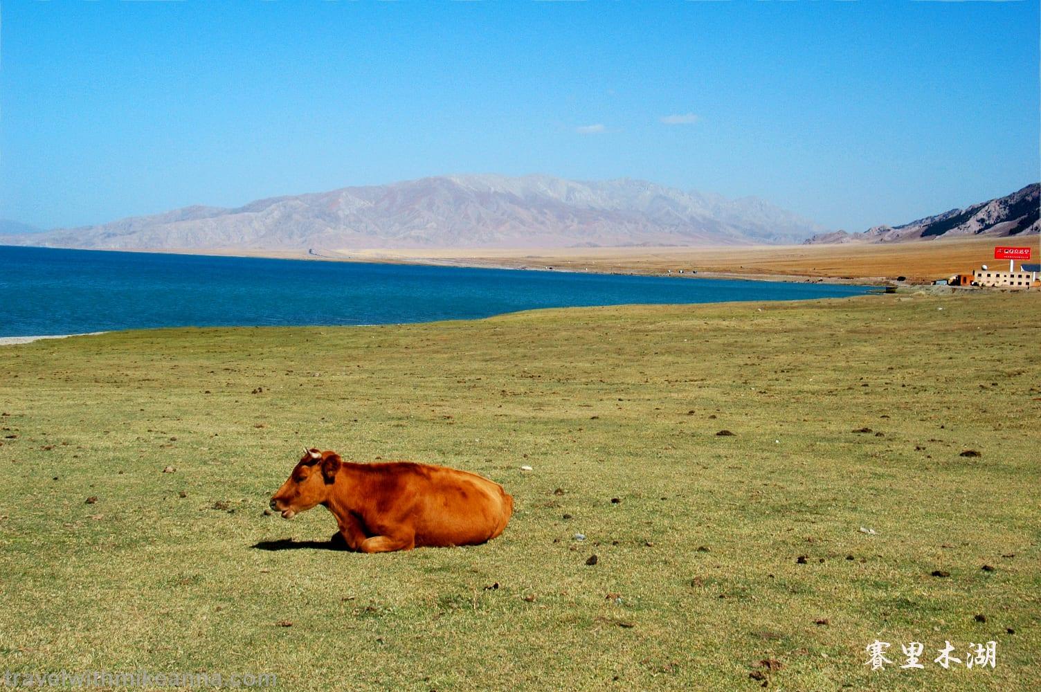 賽里木湖 中國 新疆 北疆 旅遊 攝影 照片 遊記 china xinjiang photo photography travel