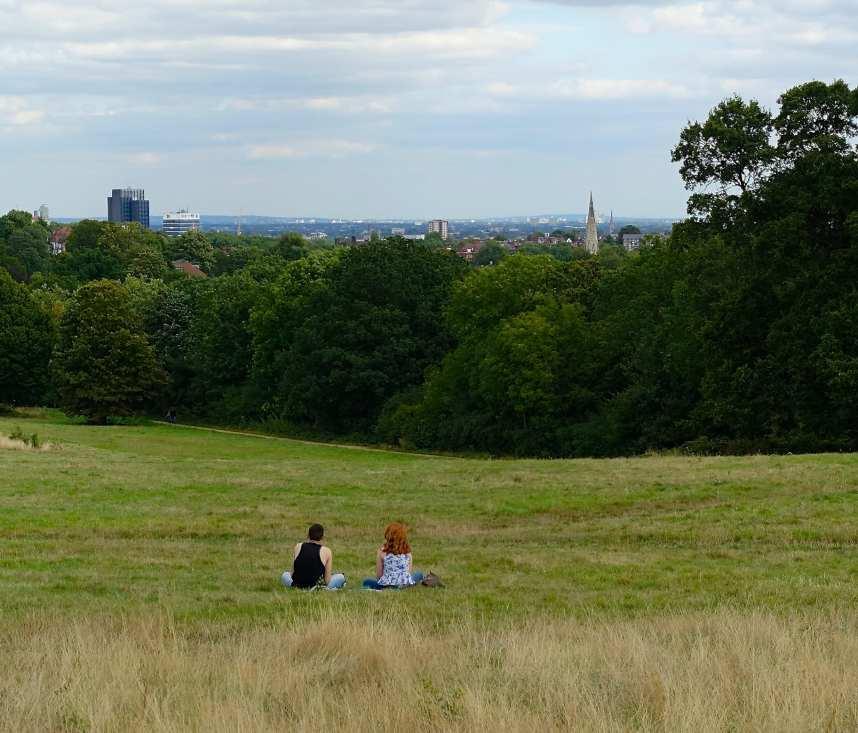 像是森林般的Hampstead Heath就坐落在城市北端