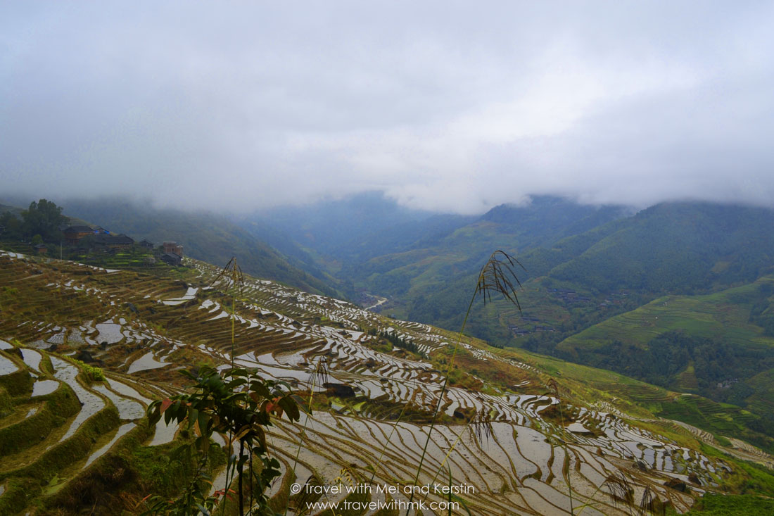 Longji Rice Terraces in Longsheng, Guanxi, China © Travelwithmk.com