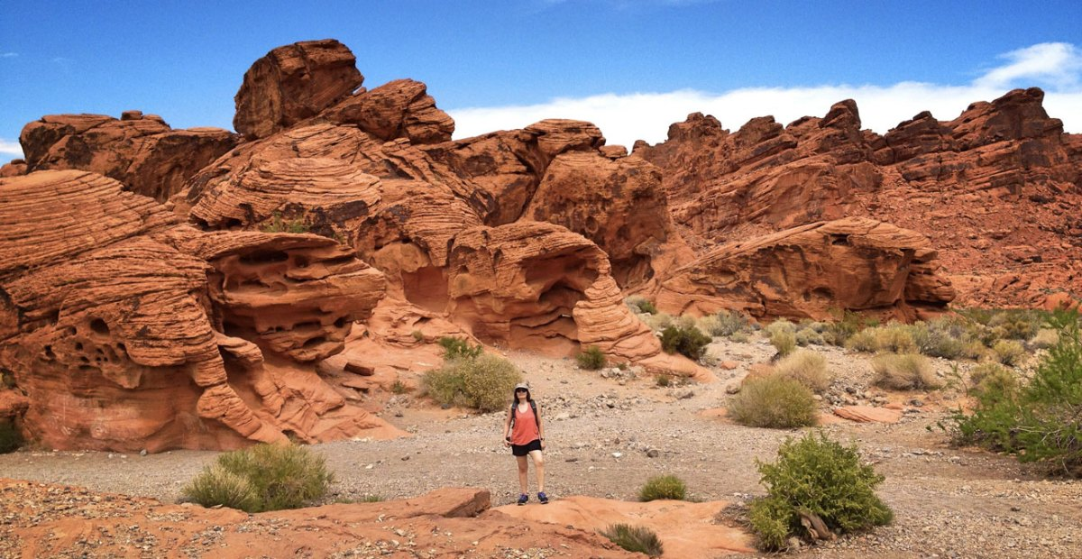 A Startling Encounter at the Valley of Fire