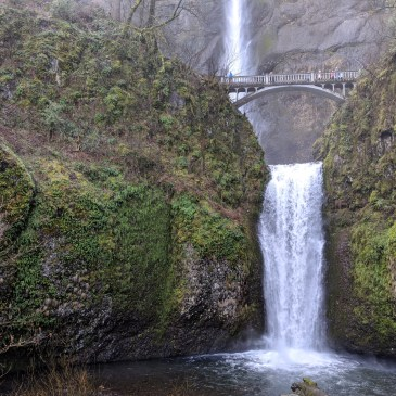 Multnomah Falls in Oregon: What to Expect When You Visit
