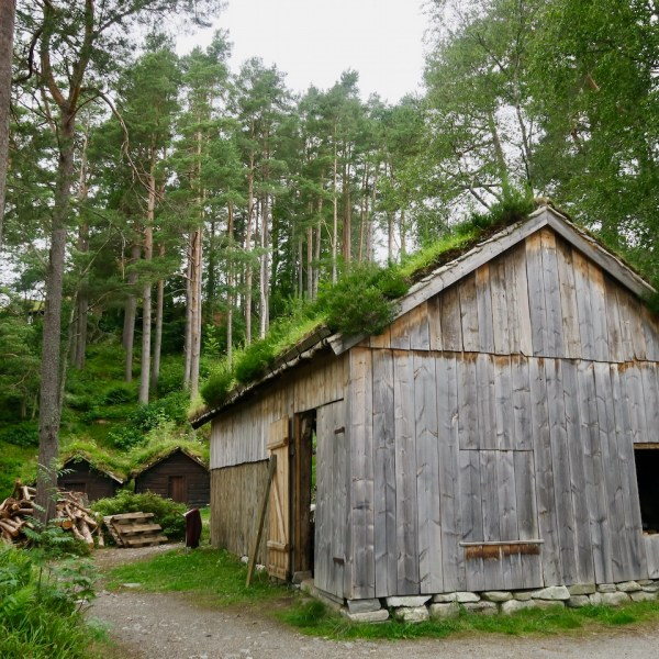 There are lots of places in Norway to see the classic grass roofs, but the Sunnmøre Museum has a plethora for your viewing.