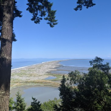 11 Awesome Things to do in Sequim, Washington