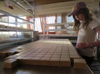 בחנות המפעל של סבתא ג'מילה בפקיעין