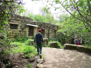 טחנת הקמח מטרוף בשמורת נחל חרמון