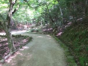 בפארק הצבאים במיאג'ימה