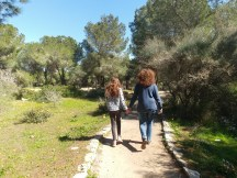 בדרך למצפור בית היערן