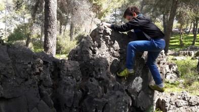 שביל הטרשונים ביער בית קשת