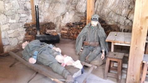 בשמורת הסינקה טורי בדולומיטים