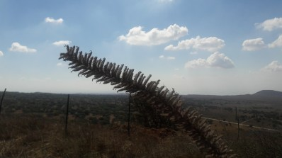 בחוות הטורבינות ברכס בני רסןן ברמת הגולן