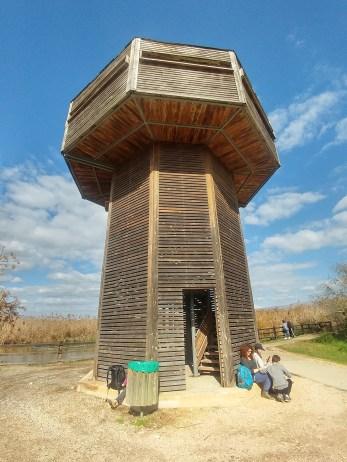 מגדל התצפית בשמורת החולה