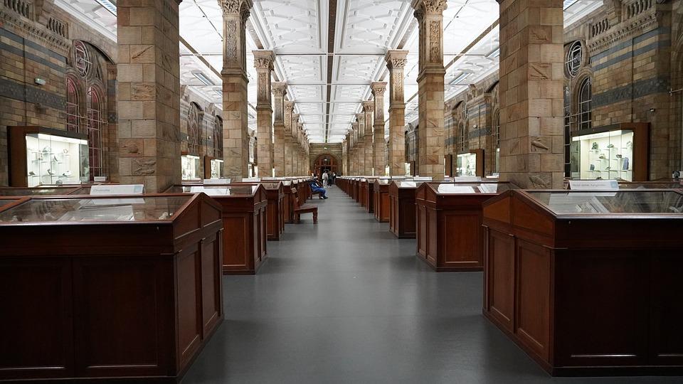 natural-history-museum-4587060_960_720