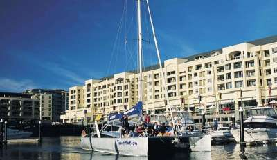 Temptation Sailing Boat, Adelaide, Glenelg, water activity, swim with dolphins, dolphins