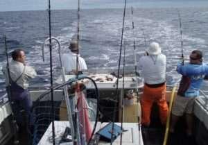 Kangaroo Island Fishing Adventures Charter