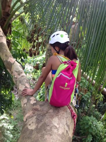 Cotopaxi Luzon Del Dia