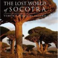 The lost world of Socotra von Richard Boggs