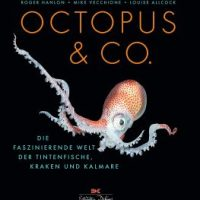 Octopus & Co. Die faszinierende Welt der Tintenfische, Kraken und Kalmare von Roger Hanlon, Mike Vecchione und Luise Allcock