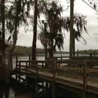 Altamaha River - Mar 2013