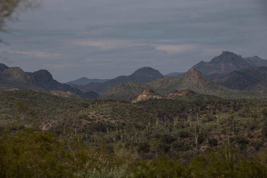 canyon1-IMG_7245.jpg