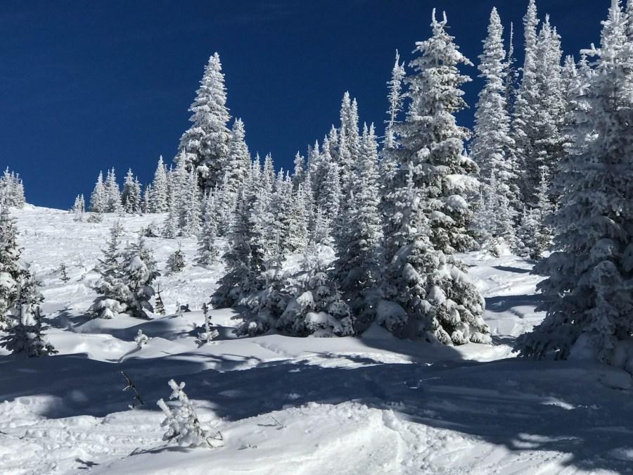 Snow-01.jpg