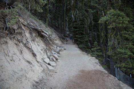 Trail-01.jpg