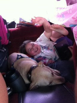 Stormy & sugar having fun in the back seat