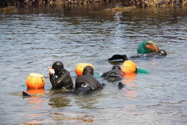 Korean Female Haenyeo Divers