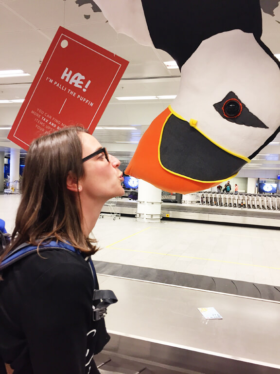 Icelandic Airport Puffin Surveillance