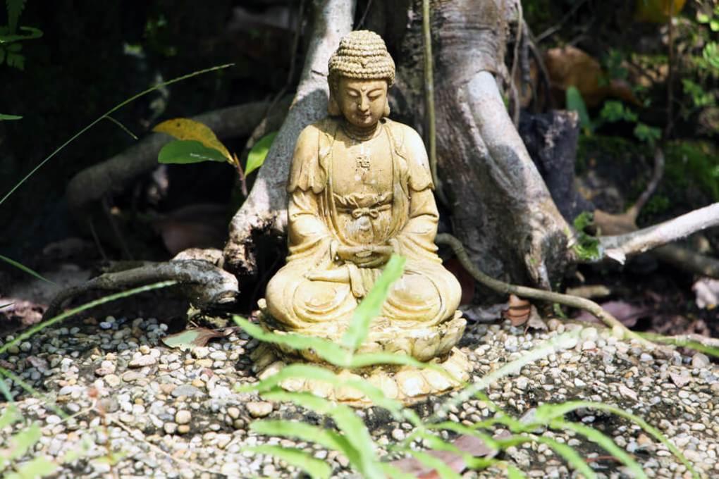 Vietnam Tiny Buddha