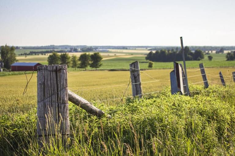 Farmer's Fence in Ontario Fields. Ontario's cryptic gravestone is only a few minutes drive from here.