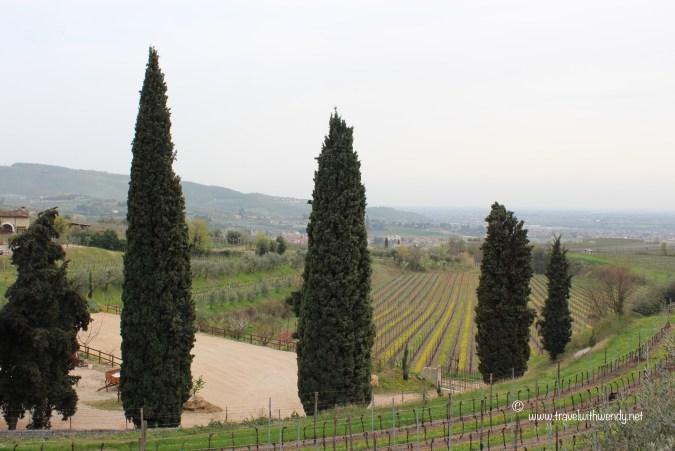 TWW - Verona Valopocelli valley