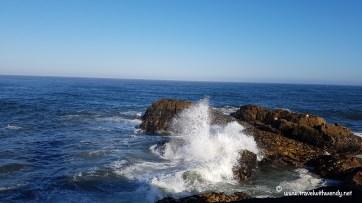 TWW - swells of Porto