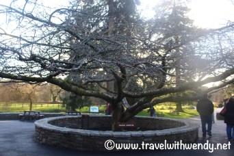 entrance-blarney-castle