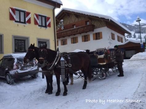 winter-horse-fun-heather