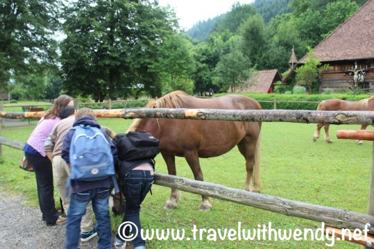 Black Forest Farm - Gutach