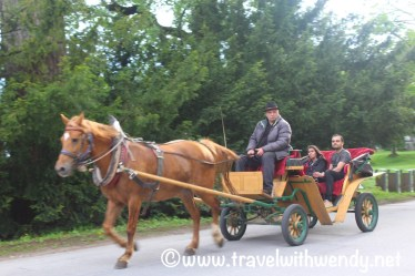 Horse and buggy around Bled