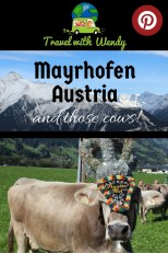 Mayrhofen Pin - Austria