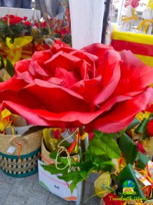 Lots of flowers - San Jorge Fest