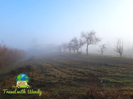 Early morning walks - Agriturismo heaven