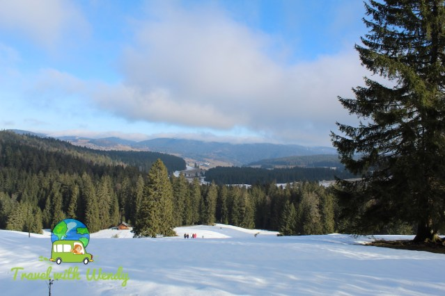 Winter fields of the Black Forest