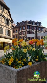 Flowers around Obernai