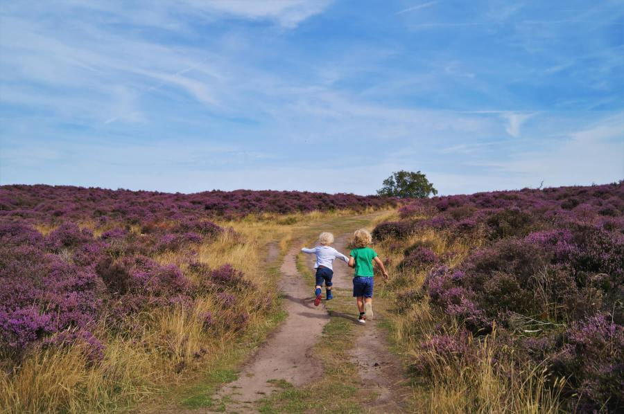 Short walks in the Peak District for young kids