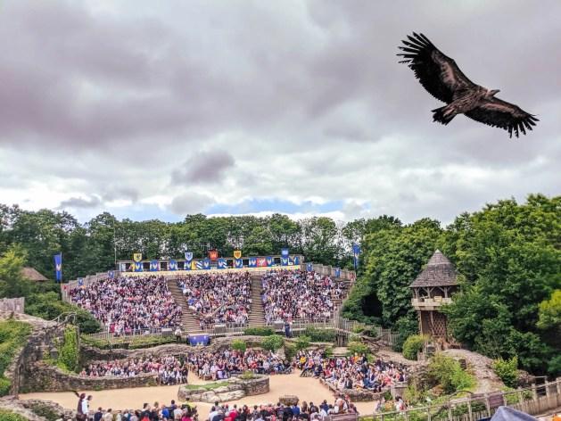 bird flying above an open theatre