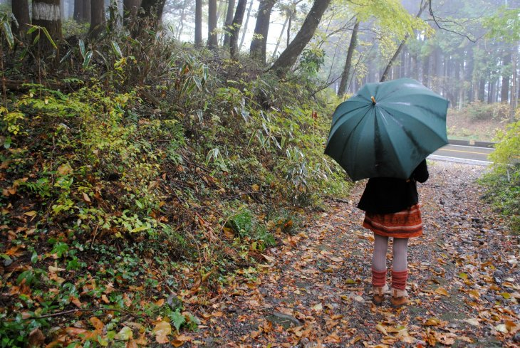 mount fuji rainy day