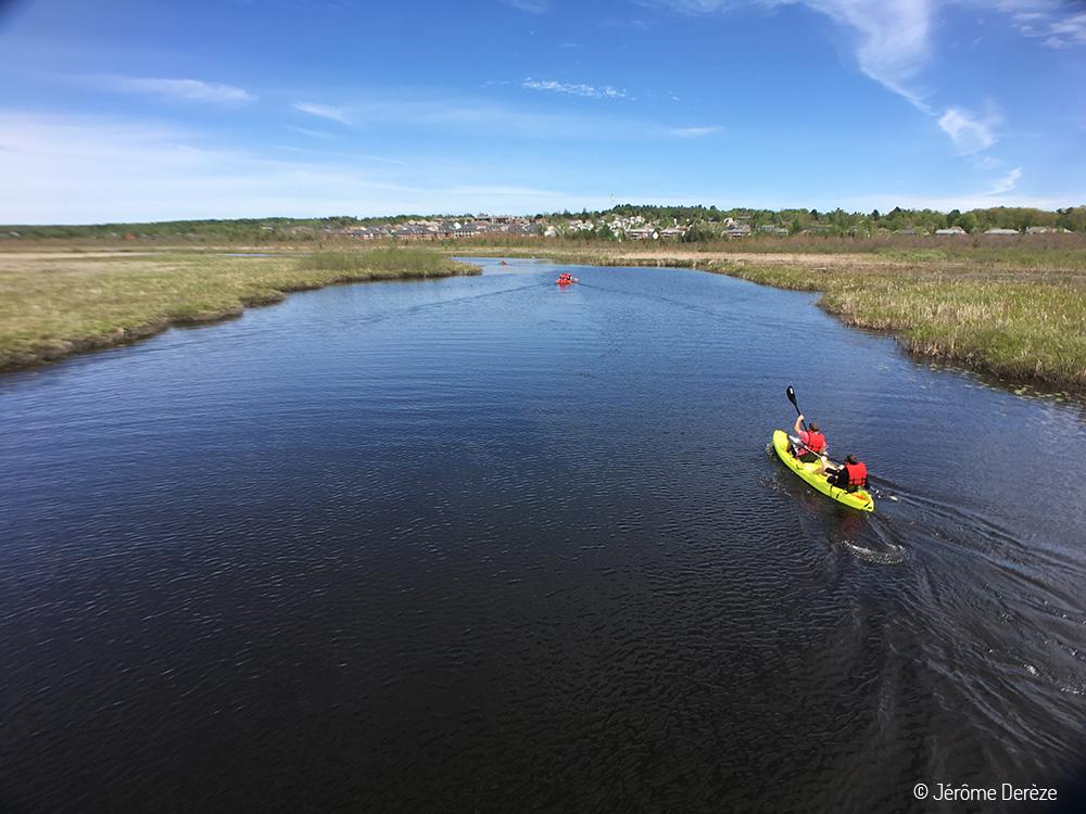 Kayak sur la Rivière aux Cerises à Magog